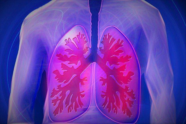 Oir Ruidos pulmonares con fonendo